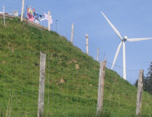 Windenergie – ja, nein oder etwas anderes?
